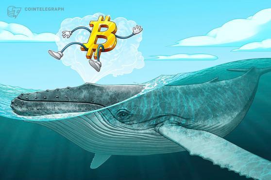 韓国ビットコイン市場で「キムチプレミアム」急上昇 他国より5%割高で取引